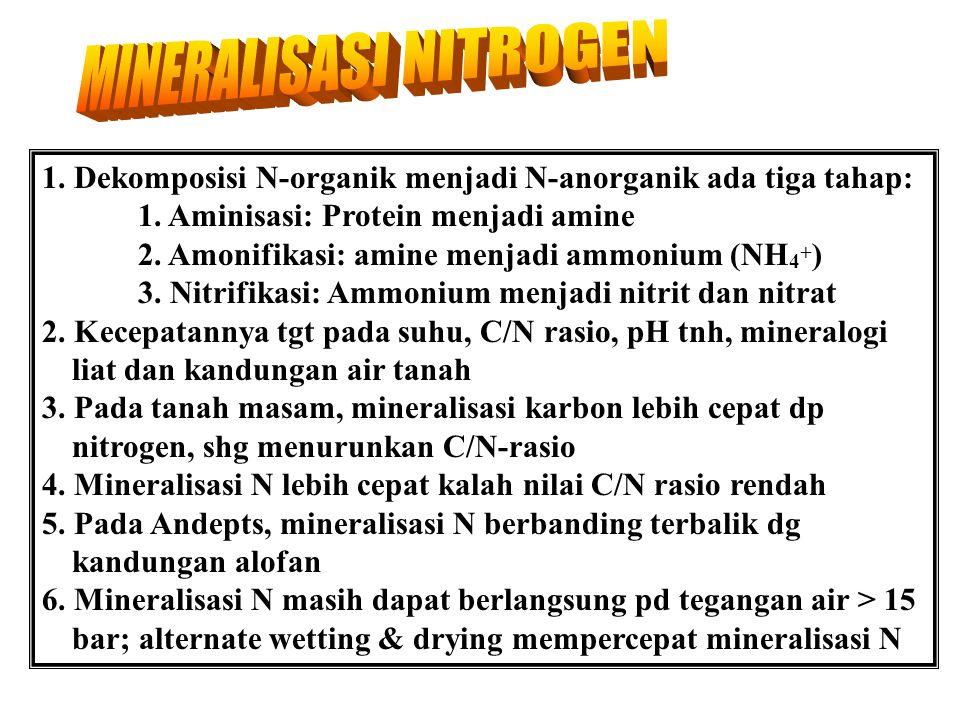 12 www.tutorvista.com/topic/nitrogen-cycle