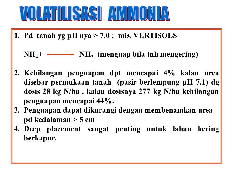 1. Pd tanah yg lembab, urea mengalami hidrolisis ensimatis: CO(NH2)2 + H2O (NH4) 2 CO 3 NH 4 + + CO 3 = 2. Sebelum terhidrolisis, urea bersifat mobil