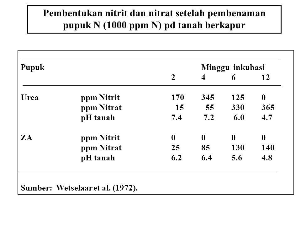 1. Pemupukan lebih efisien dibanding dg disebar 2. ZA atau Urea 80 kg N/ha dibenamkan 15 cm pd saat tanam, nitrifikasi dalam beberapa hari lebih dari