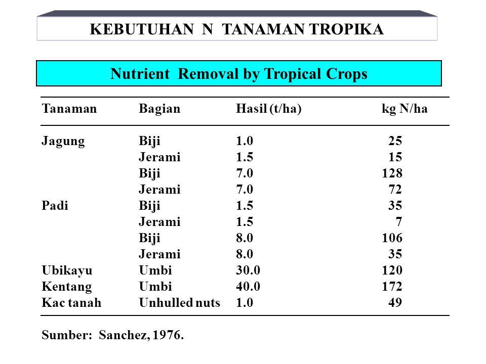Pembentukan nitrit dan nitrat setelah pembenaman pupuk N (1000 ppm N) pd tanah berkapur PupukMinggu inkubasi 24612 Ureappm Nitrit1703451250 ppm Nitrat