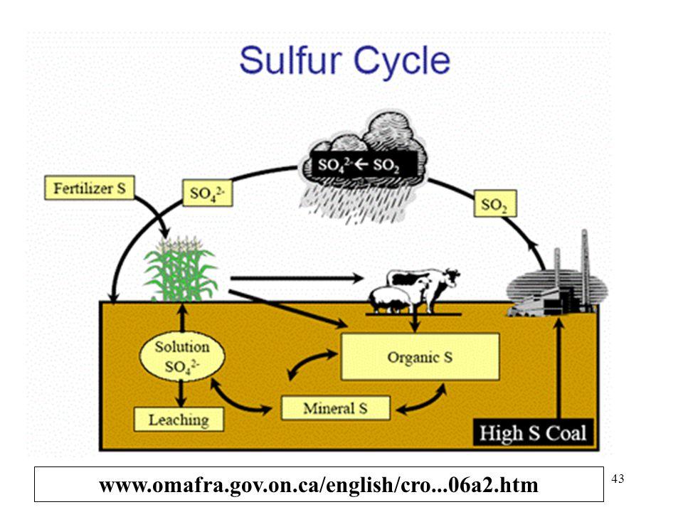 PEREDARAN BELERANG Sulfur (S) Belerang organik Sulfida (S = ) Sulfat (SO 4 = ) reduksi Oksidasi reduksi Oksidasi Dekomposisi Mineral tanah Pencucian S