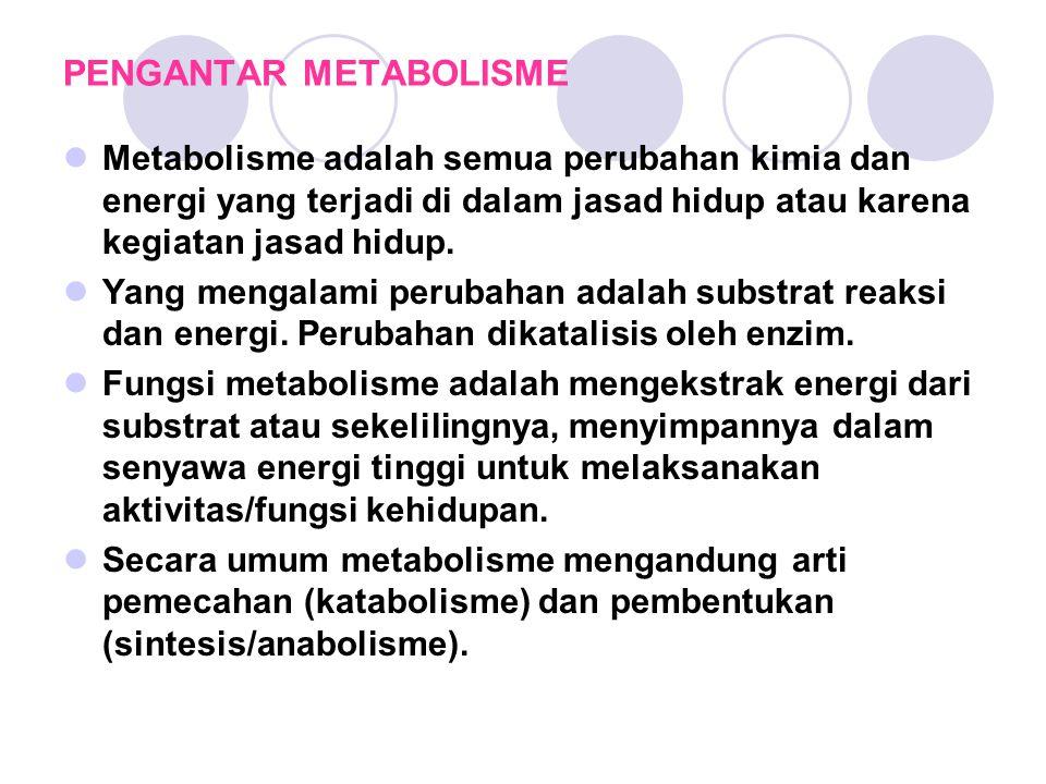 PENGANTAR METABOLISME Metabolisme adalah semua perubahan kimia dan energi yang terjadi di dalam jasad hidup atau karena kegiatan jasad hidup.