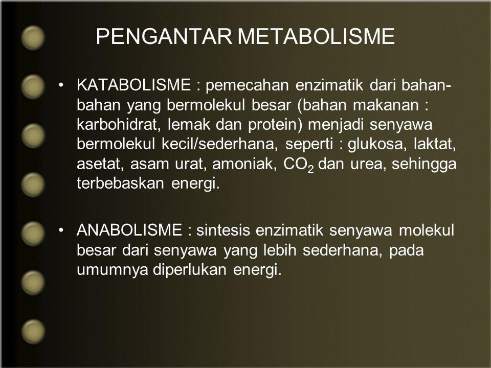 KATABOLISME : pemecahan enzimatik dari bahan- bahan yang bermolekul besar (bahan makanan : karbohidrat, lemak dan protein) menjadi senyawa bermolekul kecil/sederhana, seperti : glukosa, laktat, asetat, asam urat, amoniak, CO 2 dan urea, sehingga terbebaskan energi.