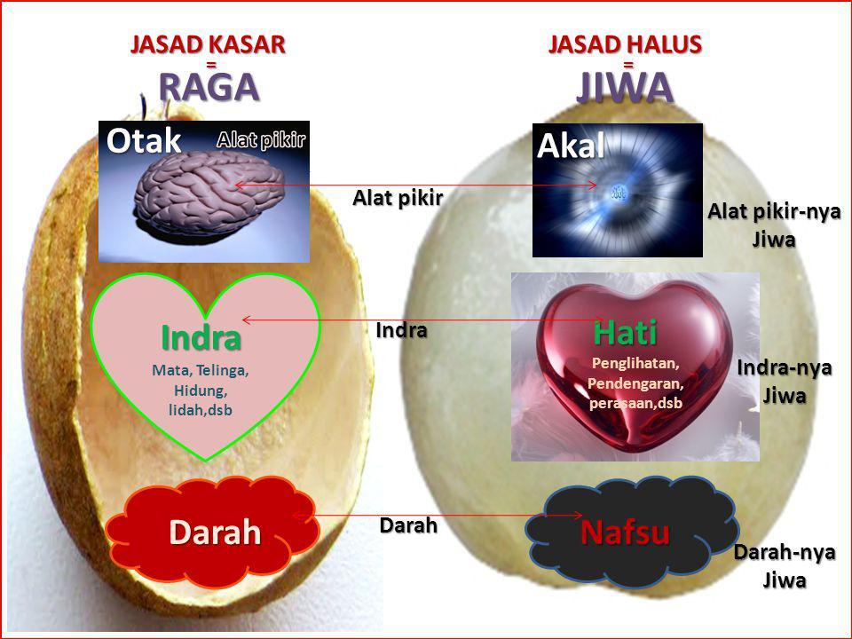 JIWA = Nafsu JASAD KASAR RAGA = Indra Darah Mata, Telinga, Hidung, lidah,dsb Penglihatan, Pendengaran, perasaan,dsb Hati Otak Akal Darah-nya Jiwa Indr