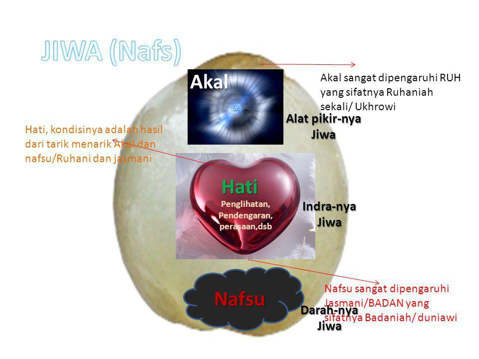 Nafsu Penglihatan, Pendengaran, perasaan,dsb Hati Akal Darah-nya Jiwa Indra-nya Jiwa Alat pikir-nya Jiwa Akal sangat dipengaruhi RUH yang sifatnya Ruh