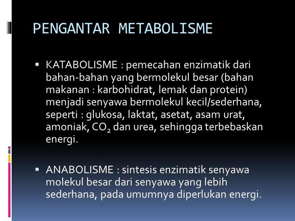 PENGANTAR METABOLISME  KATABOLISME : pemecahan enzimatik dari bahan-bahan yang bermolekul besar (bahan makanan : karbohidrat, lemak dan protein) menj