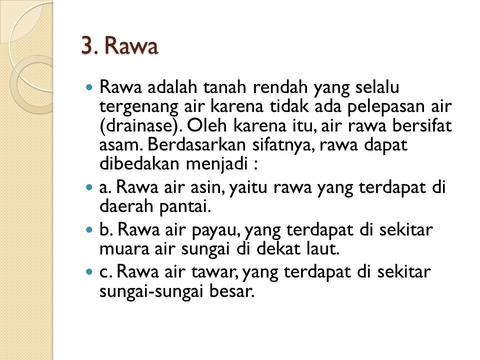3. Rawa Rawa adalah tanah rendah yang selalu tergenang air karena tidak ada pelepasan air (drainase). Oleh karena itu, air rawa bersifat asam. Berdasa