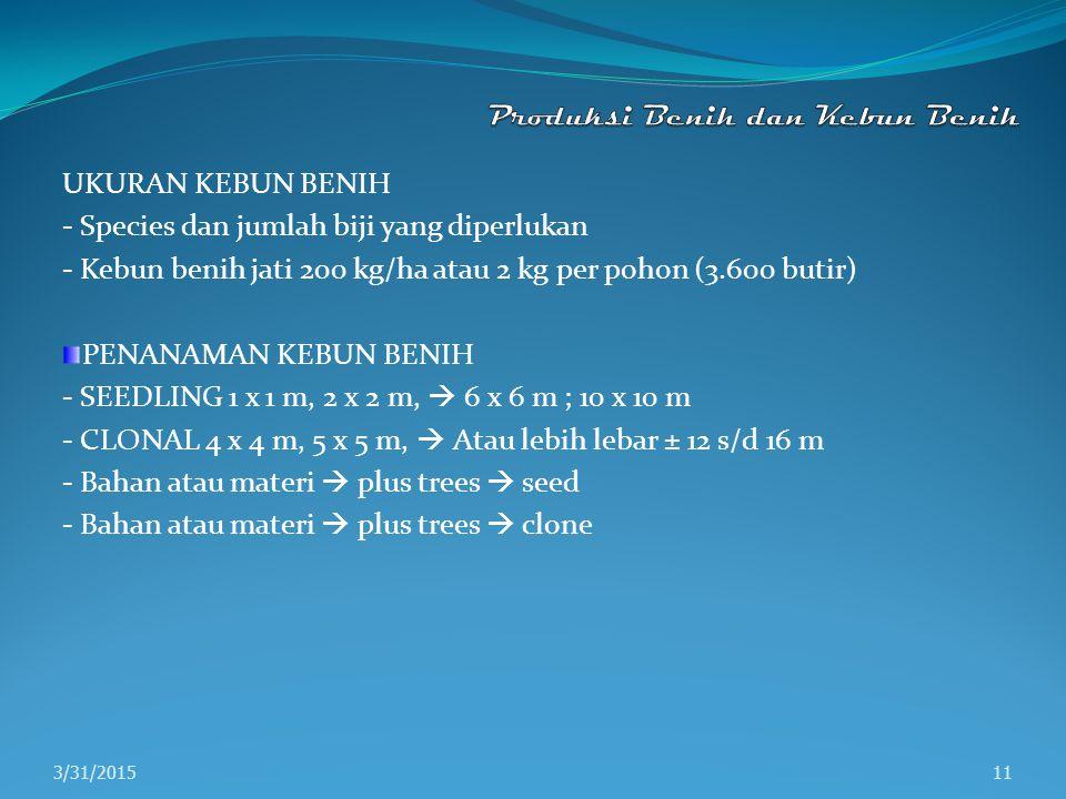 UKURAN KEBUN BENIH - Species dan jumlah biji yang diperlukan - Kebun benih jati 200 kg/ha atau 2 kg per pohon (3.600 butir) PENANAMAN KEBUN BENIH - SE