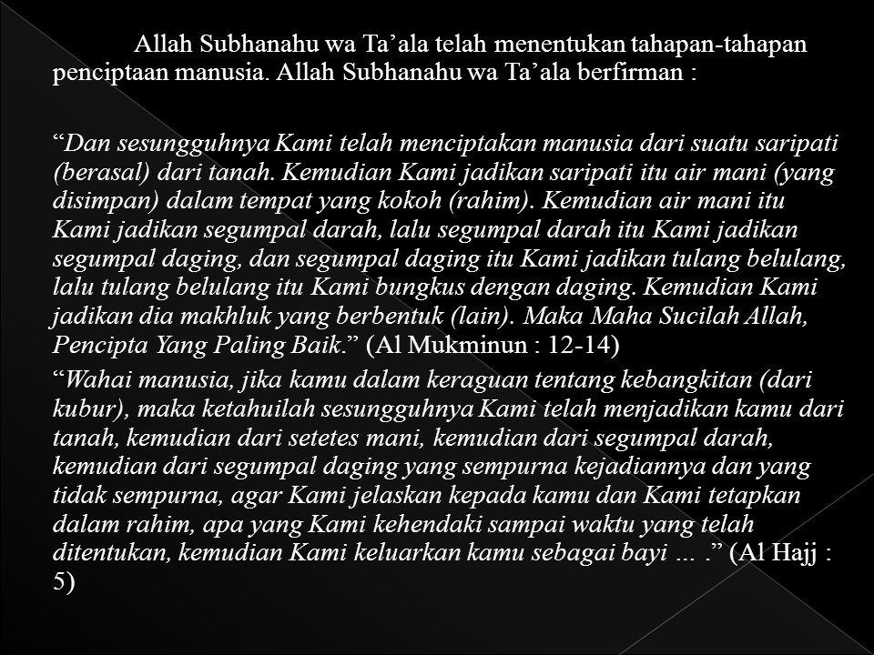 """Allah Subhanahu wa Ta'ala telah menentukan tahapan-tahapan penciptaan manusia. Allah Subhanahu wa Ta'ala berfirman : """"Dan sesungguhnya Kami telah menc"""