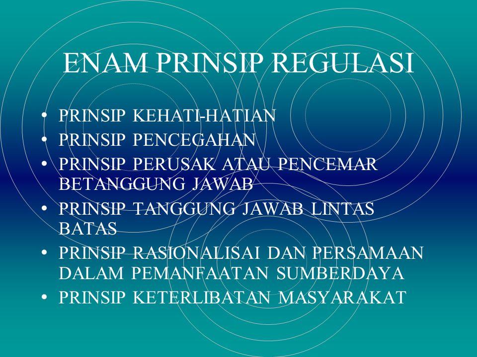 ENAM PRINSIP REGULASI PRINSIP KEHATI-HATIAN PRINSIP PENCEGAHAN PRINSIP PERUSAK ATAU PENCEMAR BETANGGUNG JAWAB PRINSIP TANGGUNG JAWAB LINTAS BATAS PRINSIP RASIONALISAI DAN PERSAMAAN DALAM PEMANFAATAN SUMBERDAYA PRINSIP KETERLIBATAN MASYARAKAT
