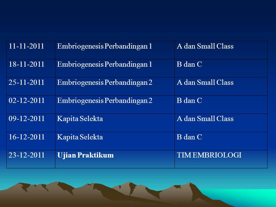 11-11-2011Embriogenesis Perbandingan 1A dan Small Class 18-11-2011Embriogenesis Perbandingan 1B dan C 25-11-2011Embriogenesis Perbandingan 2A dan Smal