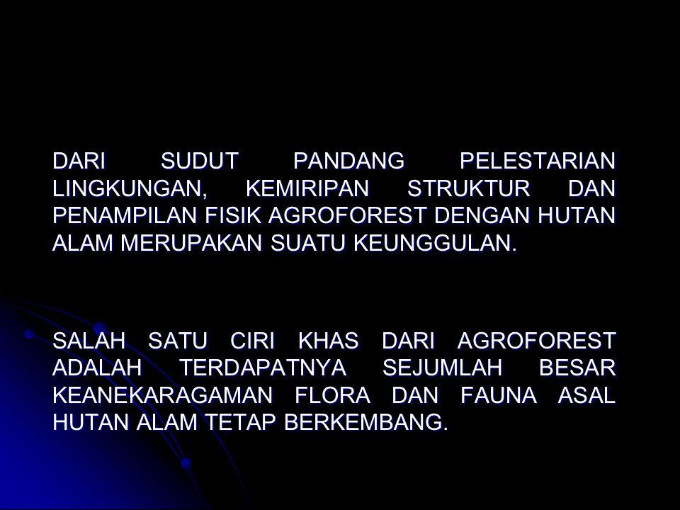 CONTOH-CONTOH AGROFOREST DI INDONESIA REPONG DAMAR DI PESISIR KRUI LAMPUNG.