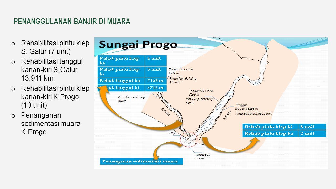 Program pengendalian daya rusak air di WS POS yang diusulkan untuk wilayah sungai (WS) POS meliputi pekerjaan fisik: normalisasi sungai, rehabilitasi