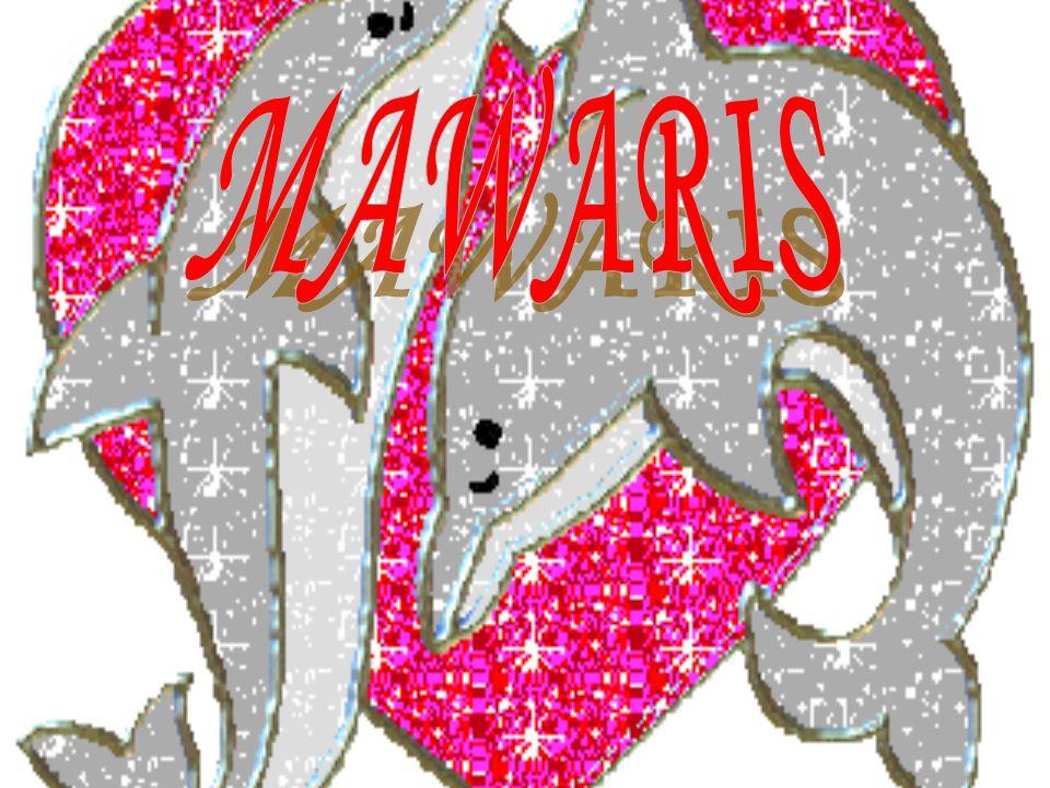 PENGERTIAN MAWARIS Kata mawaris berasal dari kata waris ( bahasa arab ) yang berarti mempusakai harta orang yang sudah meninggal, atau membagi-bagikan harta peninggalan orang yang sudah meninggal kepada ahli warisnya.