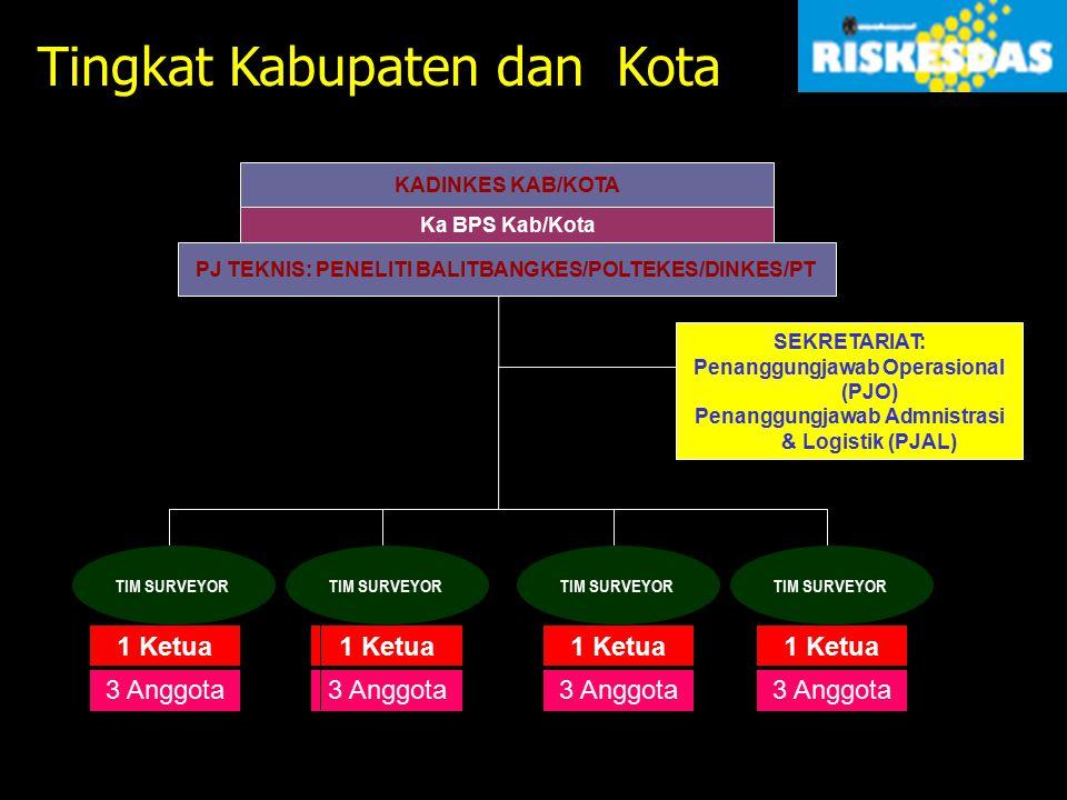 KADINKES KAB/KOTA Ka BPS Kab/Kota PJ TEKNIS: PENELITI BALITBANGKES/POLTEKES/DINKES/PT SEKRETARIAT: Penanggungjawab Operasional (PJO) Penanggungjawab A