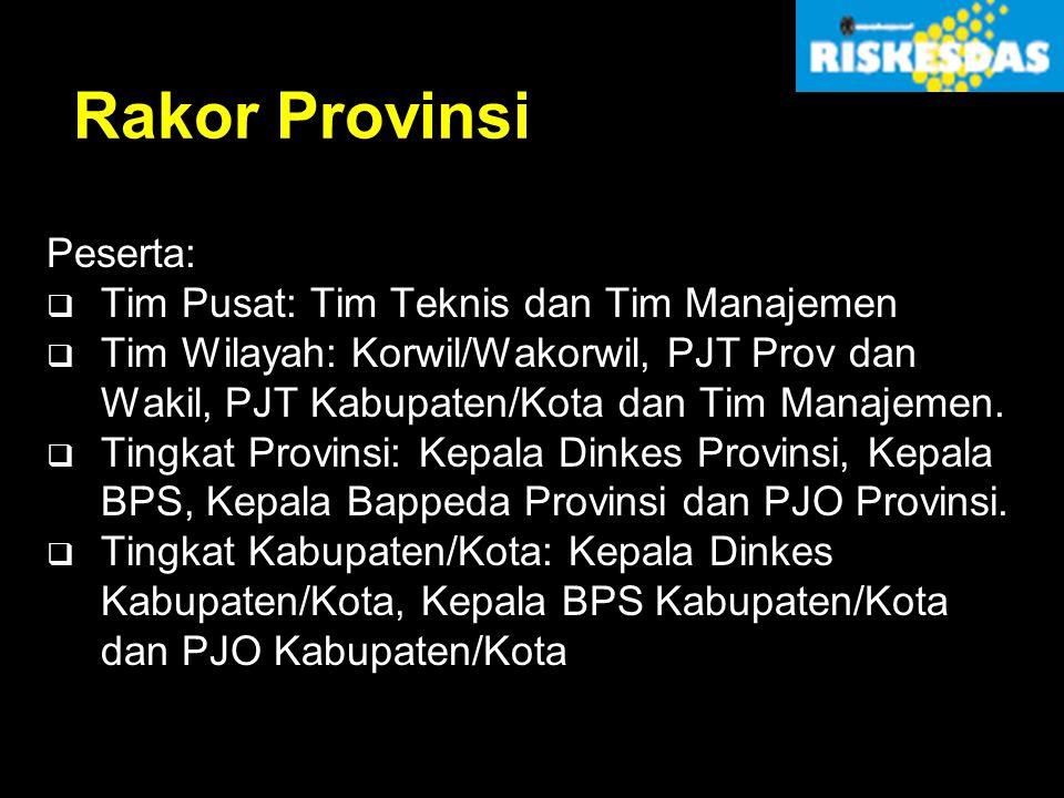Rakor Provinsi Peserta:  Tim Pusat: Tim Teknis dan Tim Manajemen  Tim Wilayah: Korwil/Wakorwil, PJT Prov dan Wakil, PJT Kabupaten/Kota dan Tim Manaj