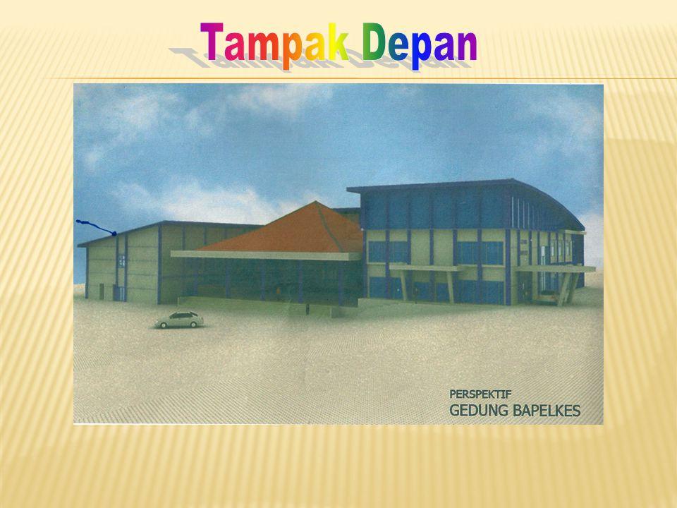 Dengan telah ditingkatkannya sarana, prasarana & SDM kediklatan di Bapelkes Palembang maka diharapkan mulai tahun 2011 semua pelatihan tenaga fungsional dan Diklat Penjenjangan PIM & Prajabatan untuk wilayah Sumbagsel agar dilaksanakan di Bapelkes Palembang.