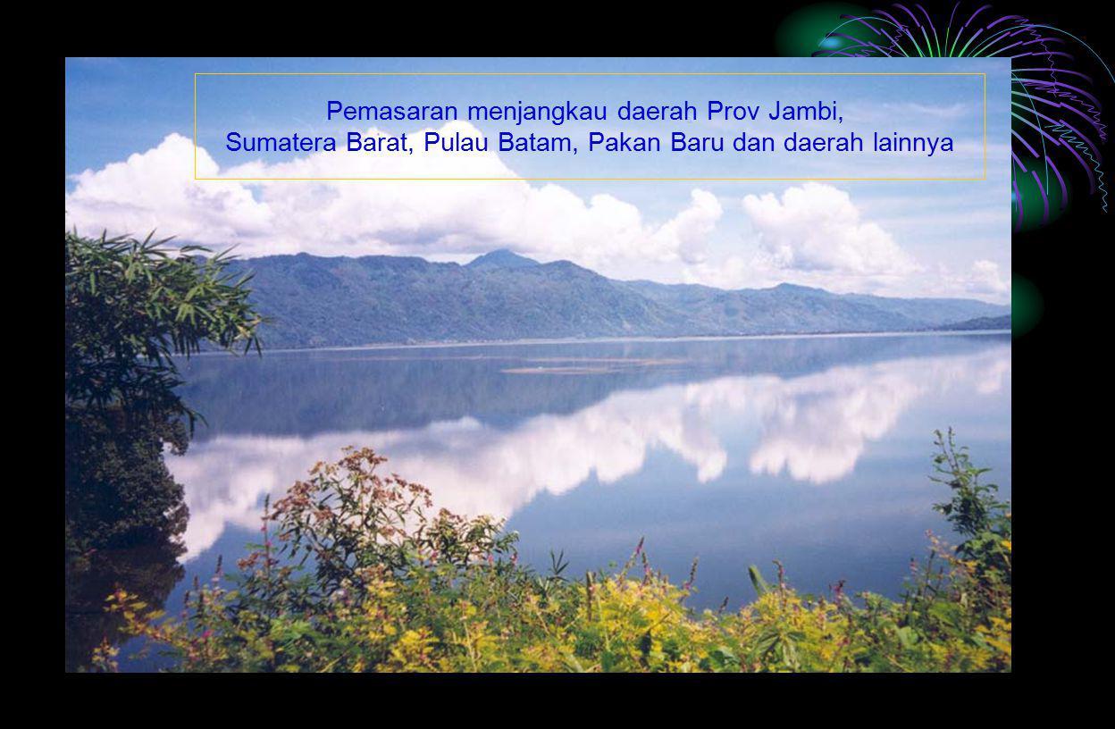 Pemasaran menjangkau daerah Prov Jambi, Sumatera Barat, Pulau Batam, Pakan Baru dan daerah lainnya