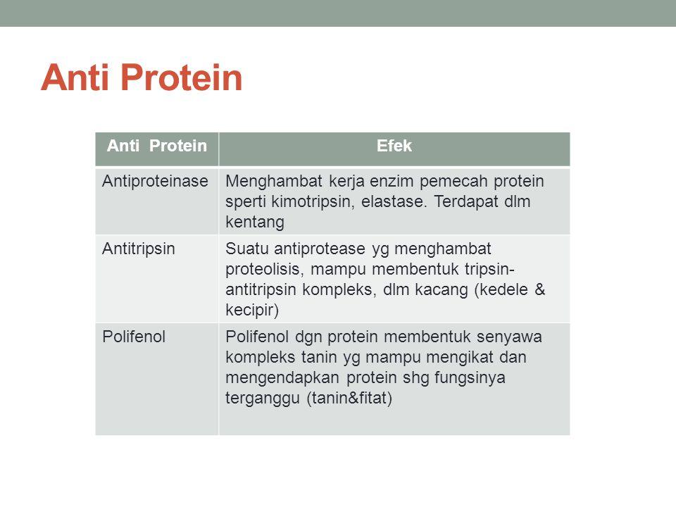 Anti Protein Efek AntiproteinaseMenghambat kerja enzim pemecah protein sperti kimotripsin, elastase. Terdapat dlm kentang AntitripsinSuatu antiproteas
