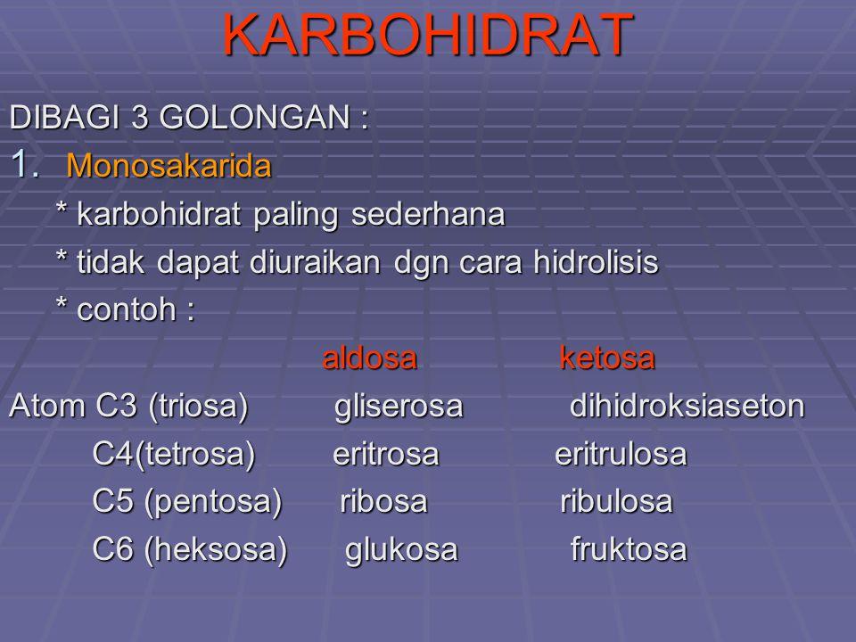 KARBOHIDRAT DIBAGI 3 GOLONGAN : 1. Monosakarida * karbohidrat paling sederhana * karbohidrat paling sederhana * tidak dapat diuraikan dgn cara hidroli