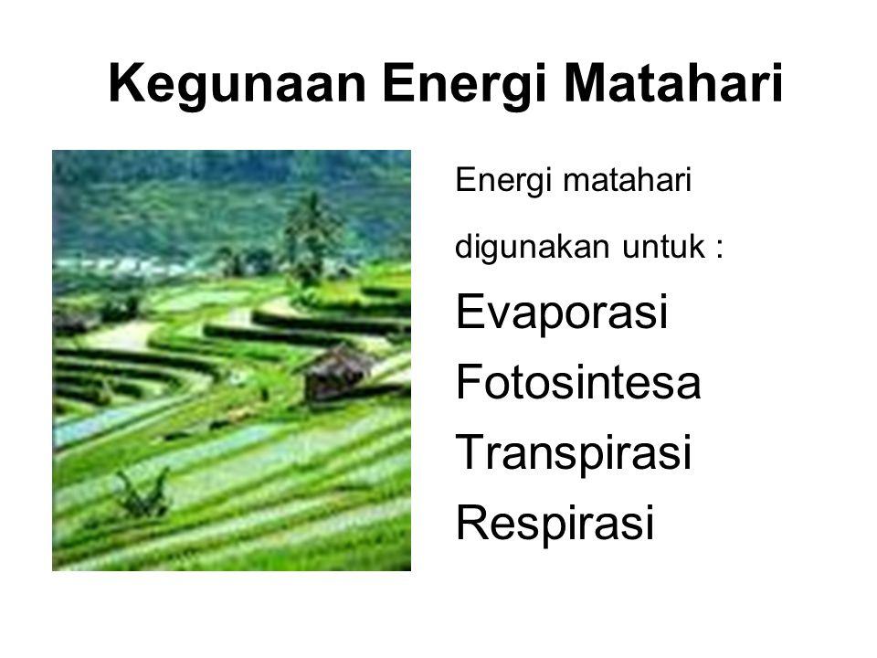 Kegunaan Energi Matahari Energi matahari digunakan untuk : Evaporasi Fotosintesa Transpirasi Respirasi