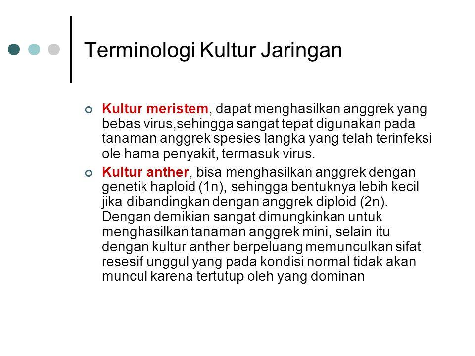 Terminologi Kultur Jaringan Kultur meristem, dapat menghasilkan anggrek yang bebas virus,sehingga sangat tepat digunakan pada tanaman anggrek spesies