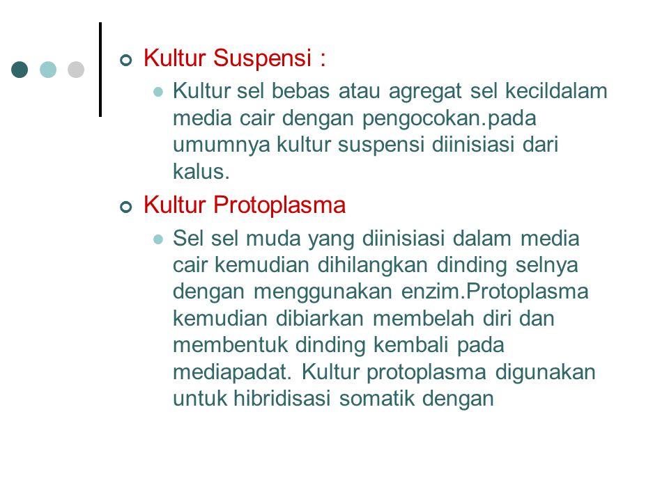 Kultur Suspensi : Kultur sel bebas atau agregat sel kecildalam media cair dengan pengocokan.pada umumnya kultur suspensi diinisiasi dari kalus. Kultur