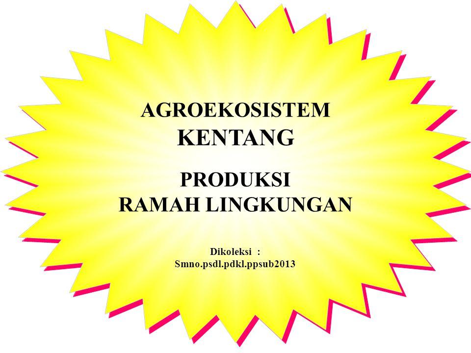 AGROEKOSISTEM KENTANG PRODUKSI RAMAH LINGKUNGAN Dikoleksi : Smno.psdl.pdkl.ppsub2013 AGROEKOSISTEM KENTANG PRODUKSI RAMAH LINGKUNGAN Dikoleksi : Smno.