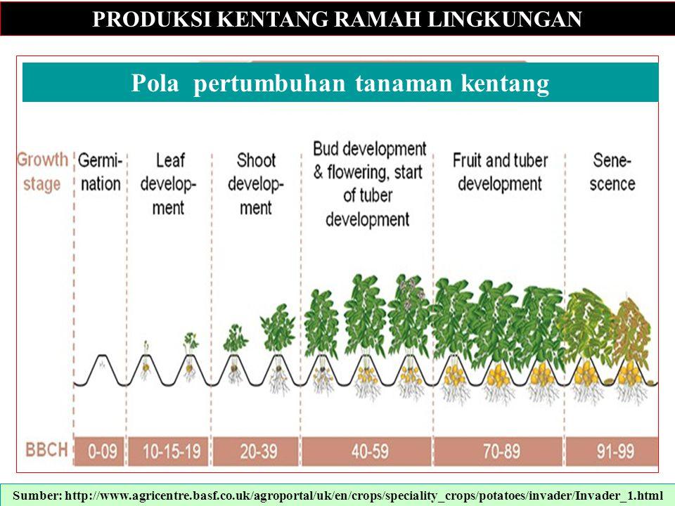 PRODUKSI KENTANG RAMAH LINGKUNGAN Sumber: http://www.agricentre.basf.co.uk/agroportal/uk/en/crops/speciality_crops/potatoes/invader/Invader_1.html l P
