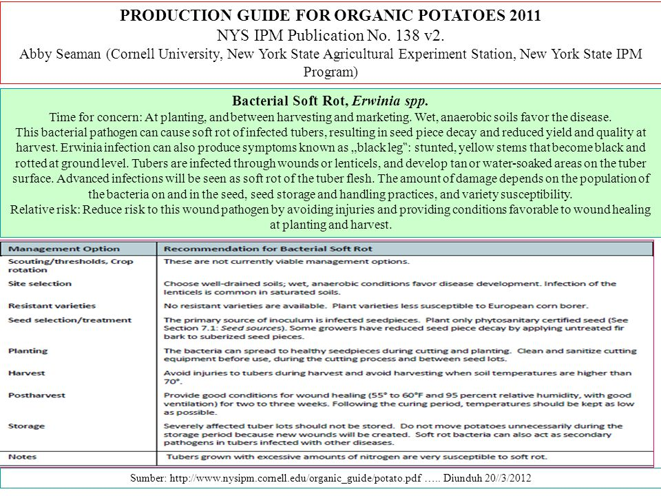 PRODUCTION GUIDE FOR ORGANIC POTATOES 2011 NYS IPM Publication No. 138 v2. Abby Seaman (Cornell University, New York State Agricultural Experiment Sta