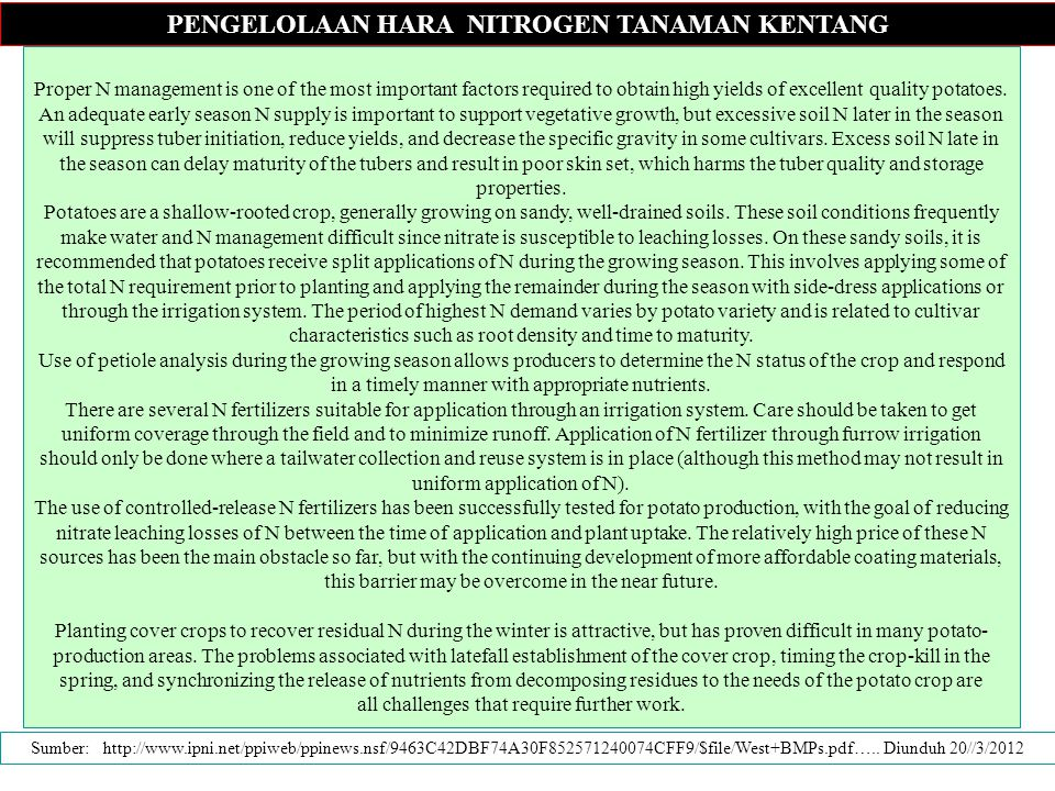 PENGELOLAAN HARA NITROGEN TANAMAN KENTANG Proper N management is one of the most important factors required to obtain high yields of excellent quality potatoes.
