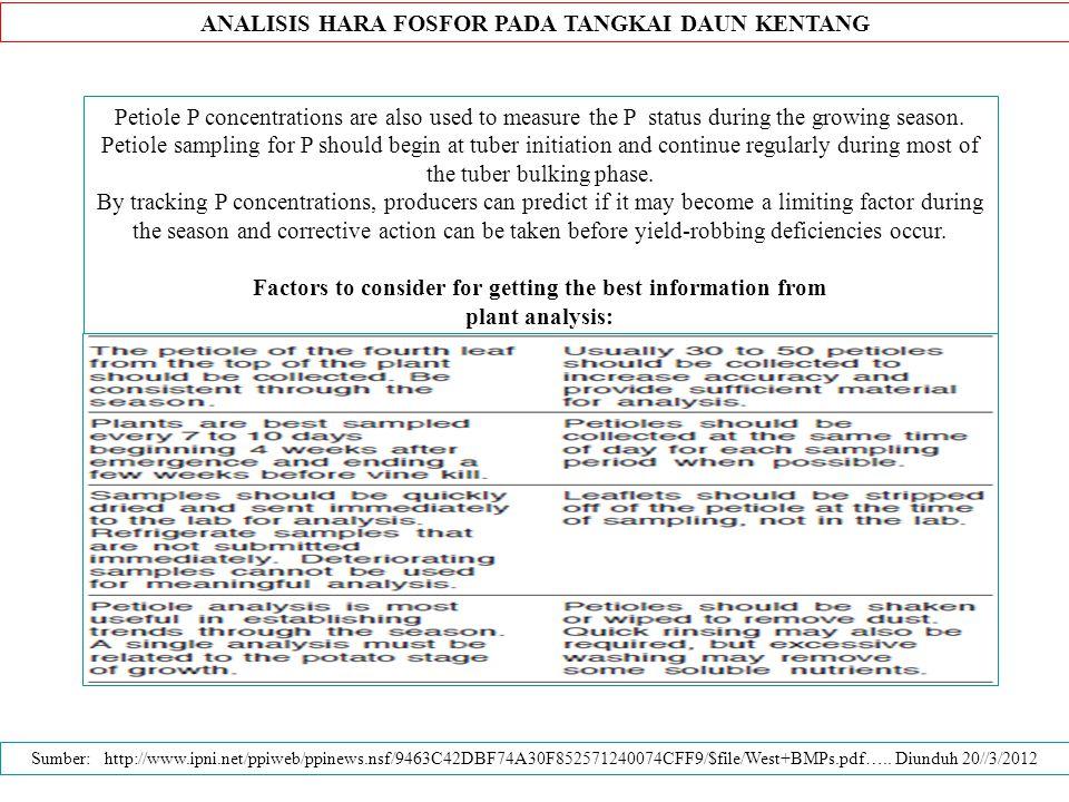 ANALISIS HARA FOSFOR PADA TANGKAI DAUN KENTANG Petiole P concentrations are also used to measure the P status during the growing season.