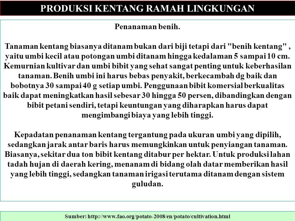 PRODUKSI KENTANG RAMAH LINGKUNGAN Stages in crop development 1.