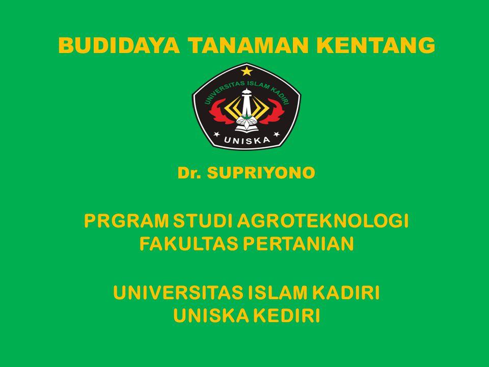 BUDIDAYA TANAMAN KENTANG Dr. SUPRIYONO PRGRAM STUDI AGROTEKNOLOGI FAKULTAS PERTANIAN UNIVERSITAS ISLAM KADIRI UNISKA KEDIRI