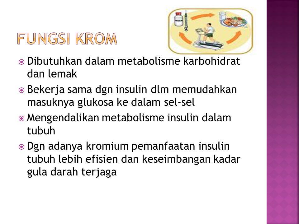  Dibutuhkan dalam metabolisme karbohidrat dan lemak  Bekerja sama dgn insulin dlm memudahkan masuknya glukosa ke dalam sel-sel  Mengendalikan metab