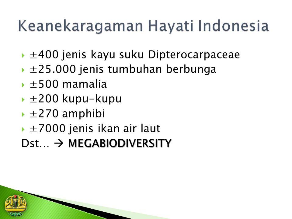  ±400 jenis kayu suku Dipterocarpaceae  ±25.000 jenis tumbuhan berbunga  ±500 mamalia  ±200 kupu-kupu  ±270 amphibi  ±7000 jenis ikan air laut MEGABIODIVERSITY Dst…  MEGABIODIVERSITY