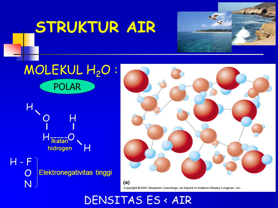 STRUKTUR AIR MOLEKUL H 2 O : POLAR H O H H-----O H Ikatan hidrogen H - F O N Elektronegativitas tinggi DENSITAS ES < AIR