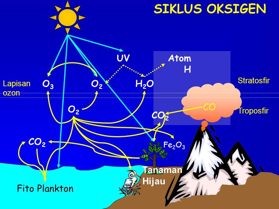 SIKLUS OKSIGEN CO Fito Plankton Tanaman Hijau Fe 2 O 3 CO 2 O2O2 O2O2 O3O3 H2OH2O UVAtom H Troposfir Stratosfir Lapisan ozon