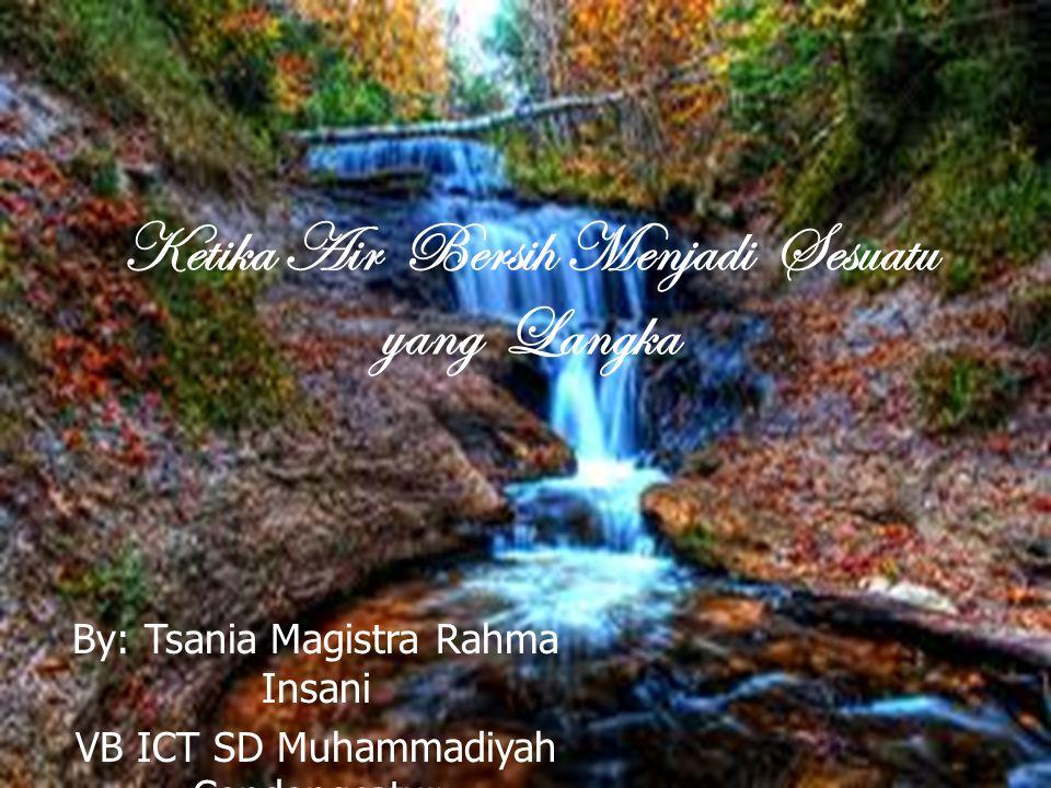 Ketika Air Bersih Menjadi Sesuatu yang Langka By: Tsania Magistra Rahma Insani VB ICT SD Muhammadiyah Condongcatur