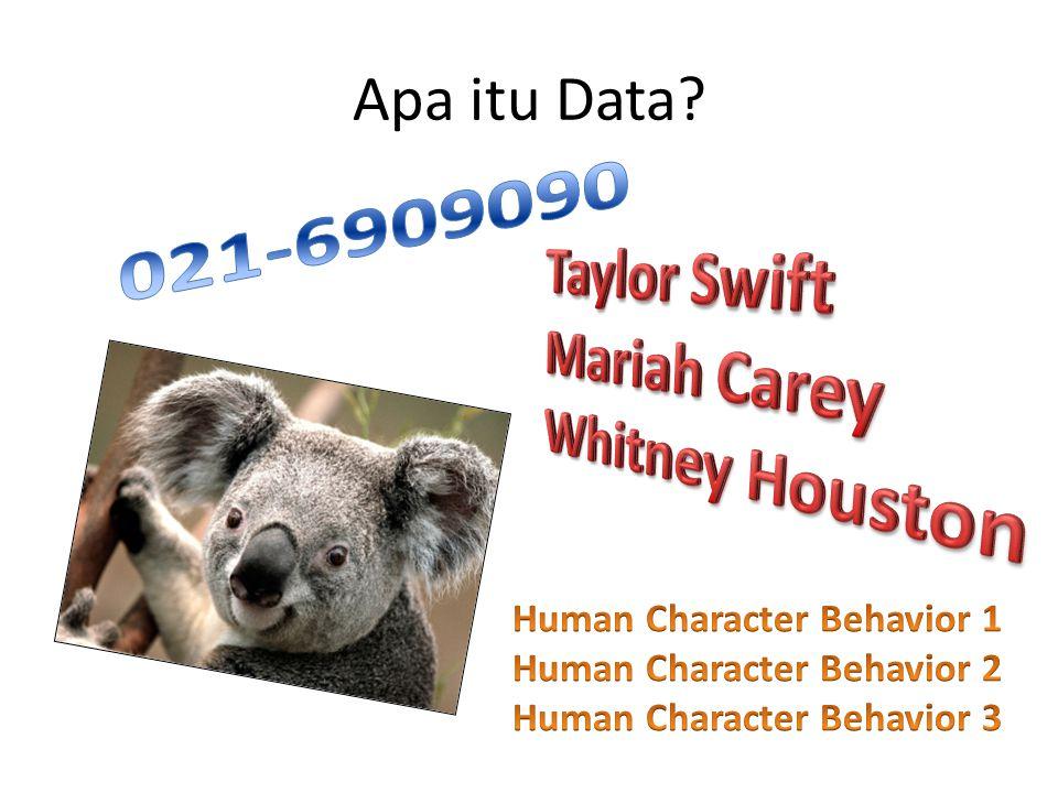 Apa itu Data?