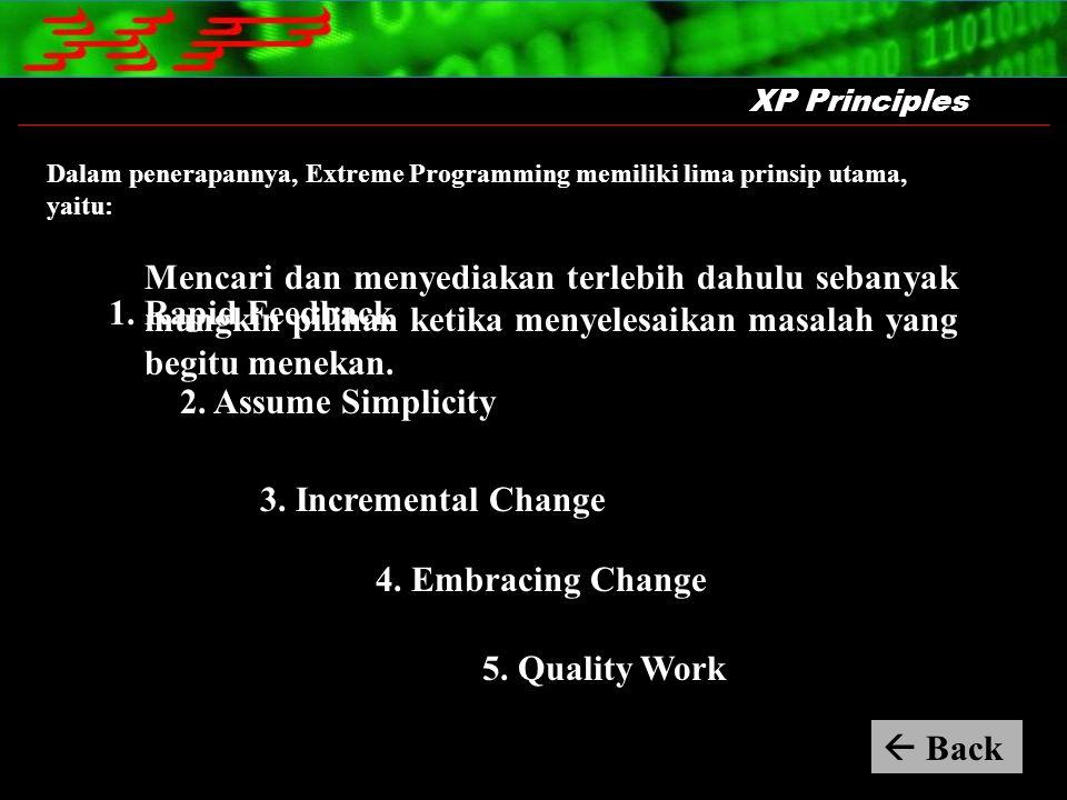 Dalam penerapannya, Extreme Programming memiliki lima prinsip utama, yaitu: XP Principles Mencari dan menyediakan terlebih dahulu sebanyak mungkin pil