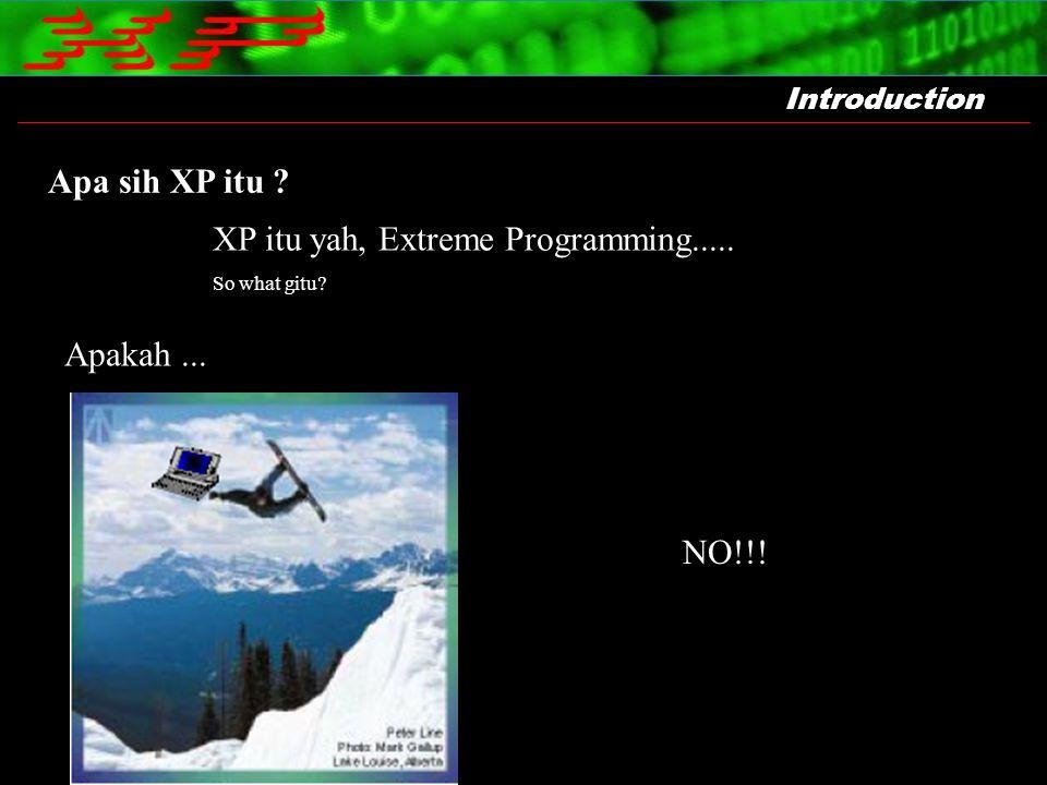 Introduction Apa sih XP itu ? XP itu yah, Extreme Programming..... So what gitu? Apakah... NO!!!