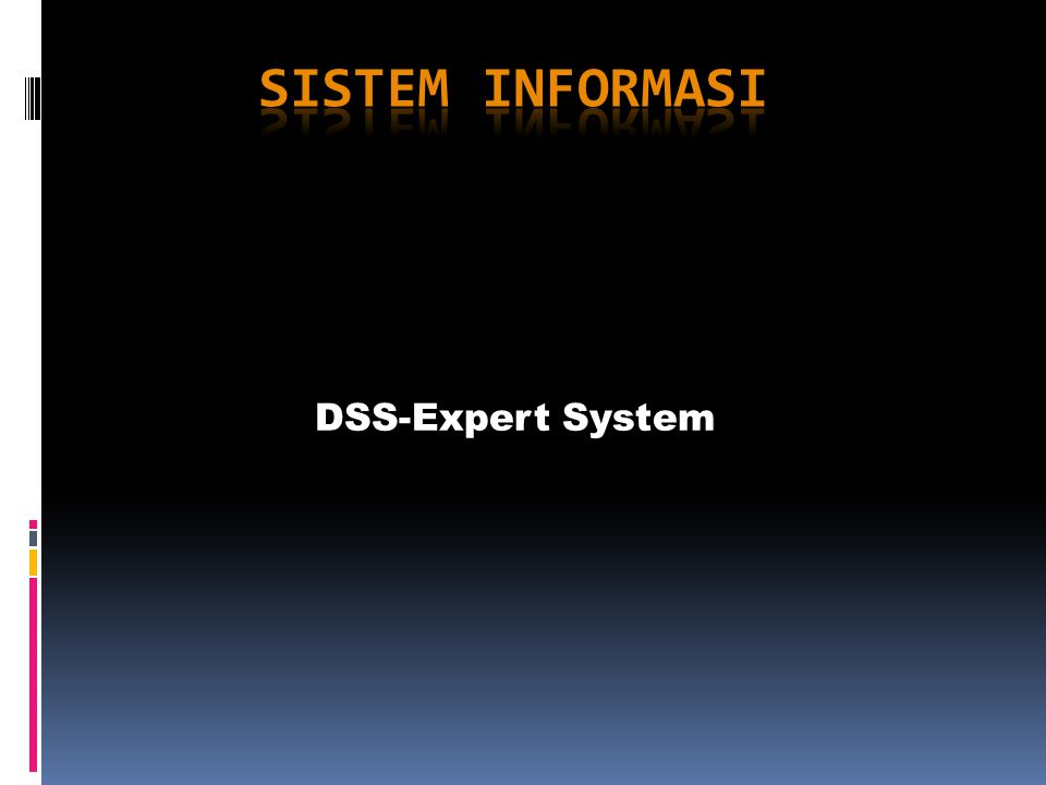 DSS-Expert System