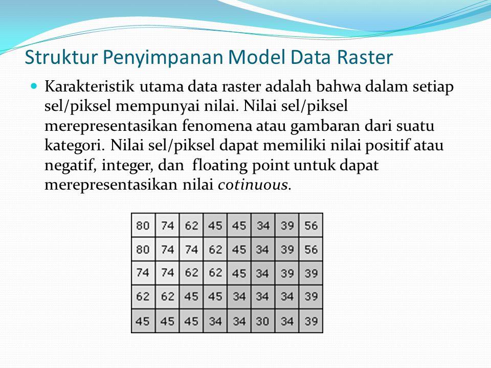 Struktur Penyimpanan Model Data Raster Karakteristik utama data raster adalah bahwa dalam setiap sel/piksel mempunyai nilai.