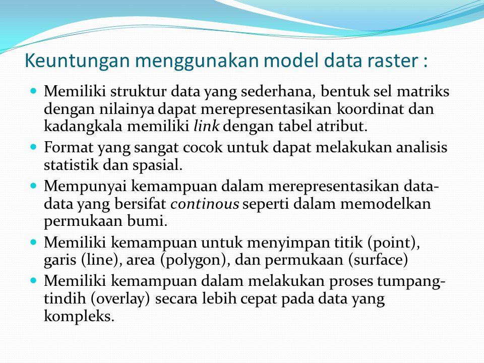 Keuntungan menggunakan model data raster : Memiliki struktur data yang sederhana, bentuk sel matriks dengan nilainya dapat merepresentasikan koordinat dan kadangkala memiliki link dengan tabel atribut.