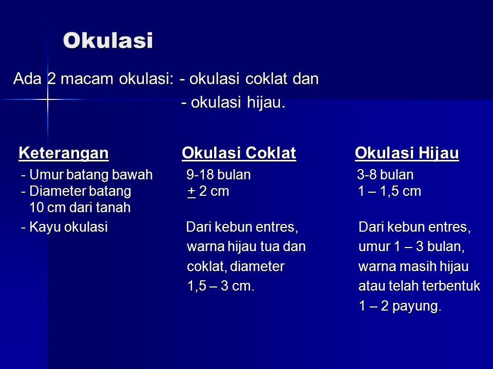 Okulasi Ada 2 macam okulasi: - okulasi coklat dan - okulasi hijau. - okulasi hijau. Keterangan Okulasi Coklat Okulasi Hijau Keterangan Okulasi Coklat