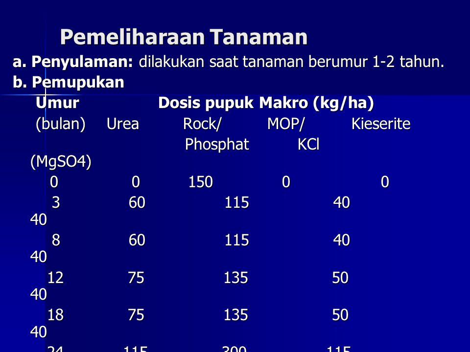 Pemeliharaan Tanaman a. Penyulaman: dilakukan saat tanaman berumur 1-2 tahun. b. Pemupukan Umur Dosis pupuk Makro (kg/ha) Umur Dosis pupuk Makro (kg/h