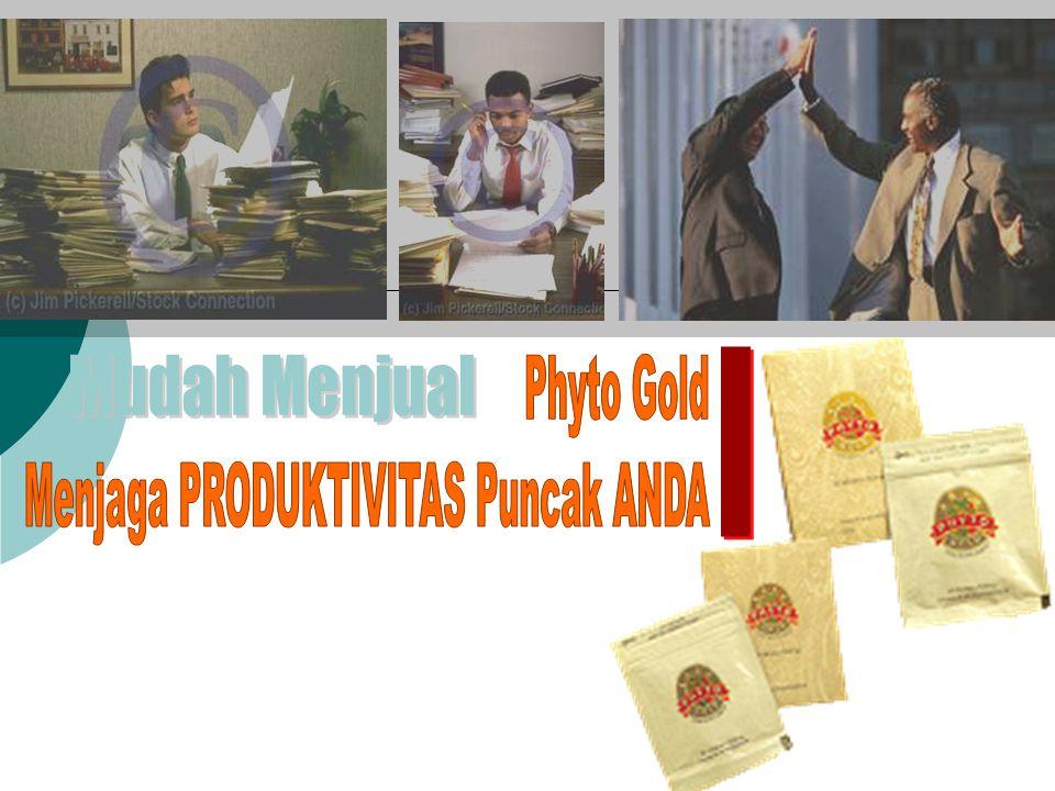 Produktivitas Anda  diawali macet di pagi hari  kesibukan di siang hari  hingga pulang malam hari Pagi Hari..