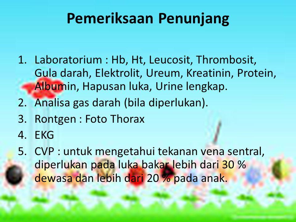 Pemeriksaan Penunjang 1.Laboratorium : Hb, Ht, Leucosit, Thrombosit, Gula darah, Elektrolit, Ureum, Kreatinin, Protein, Albumin, Hapusan luka, Urine lengkap.
