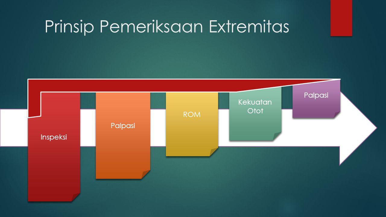 Prinsip Pemeriksaan Extremitas Inspeksi Palpasi ROM Kekuatan Otot Kekuatan Otot Palpasi